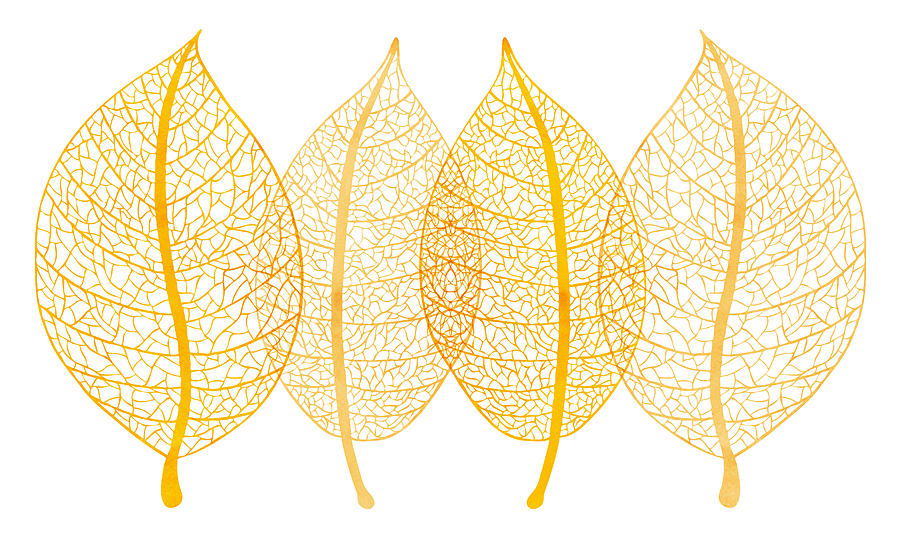 Frank Tschakert Painting - Leaves by Frank Tschakert