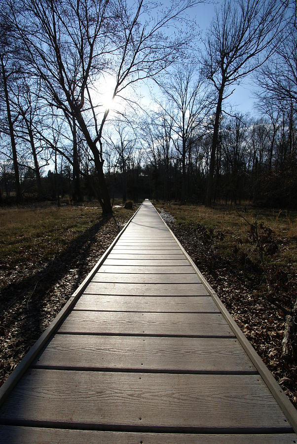 Wood Photograph - Long Walk by Heidi Poulin