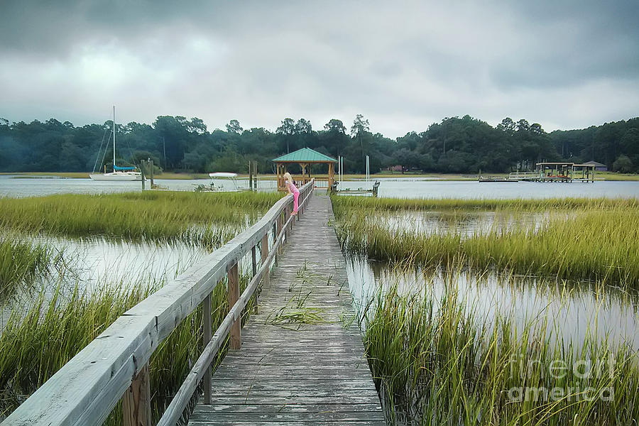 Lowcountry Dock by Dustin K Ryan