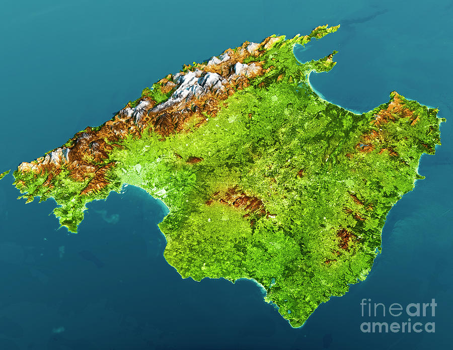 Mallorca Island Topographic Map 3d View Color Digital Art By Frank