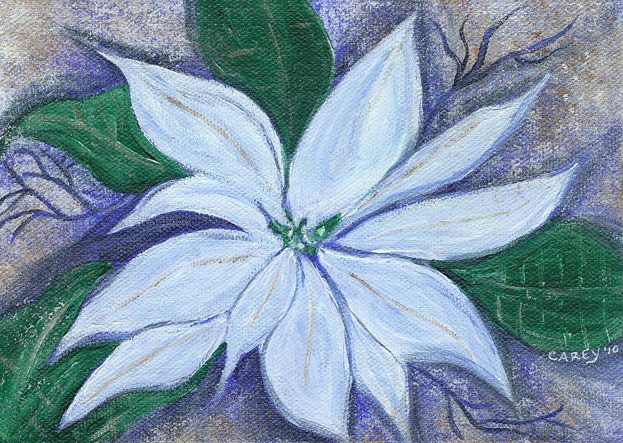 Midnight Poinsettia by Carey Waters