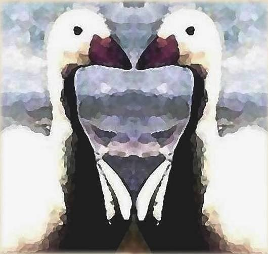 Mirror Image Mixed Media by Brenda Garacci