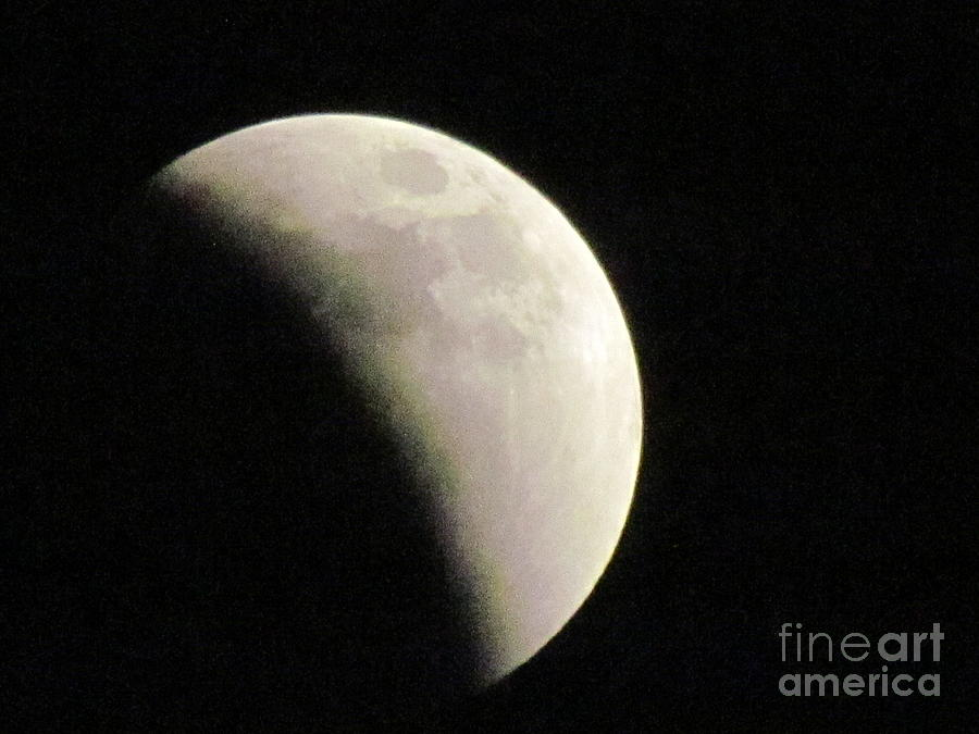 Moon Eclipse Panama  by Ted Pollard