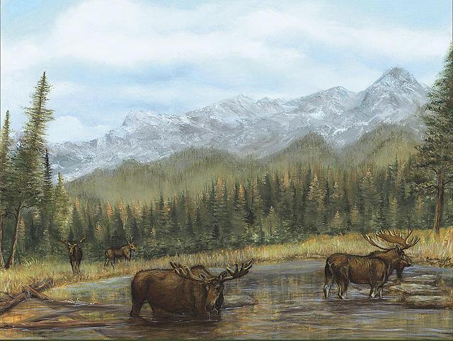 Moose Mountain Print - 2 Moose In The Mountains by Shane Lieske