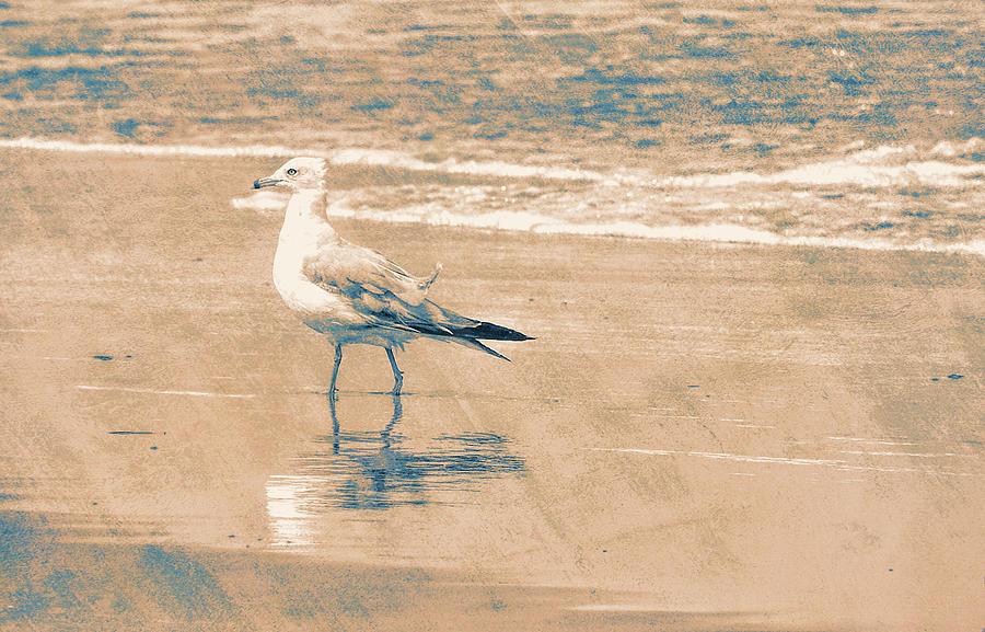 Ocean Photograph - Ocean Breeze Walk by JAMART Photography
