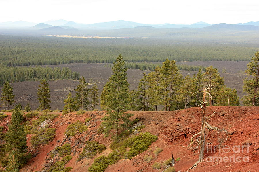 Oregon Photograph - Oregon Landscape - View From Lava Butte by Carol Groenen