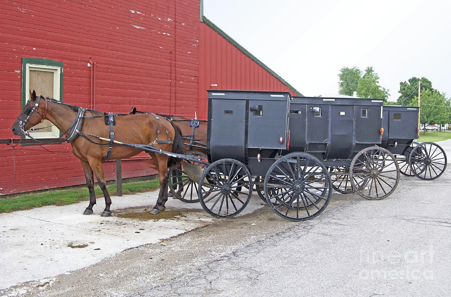 Amish Photograph - Amish Parking Lot by Ann Horn