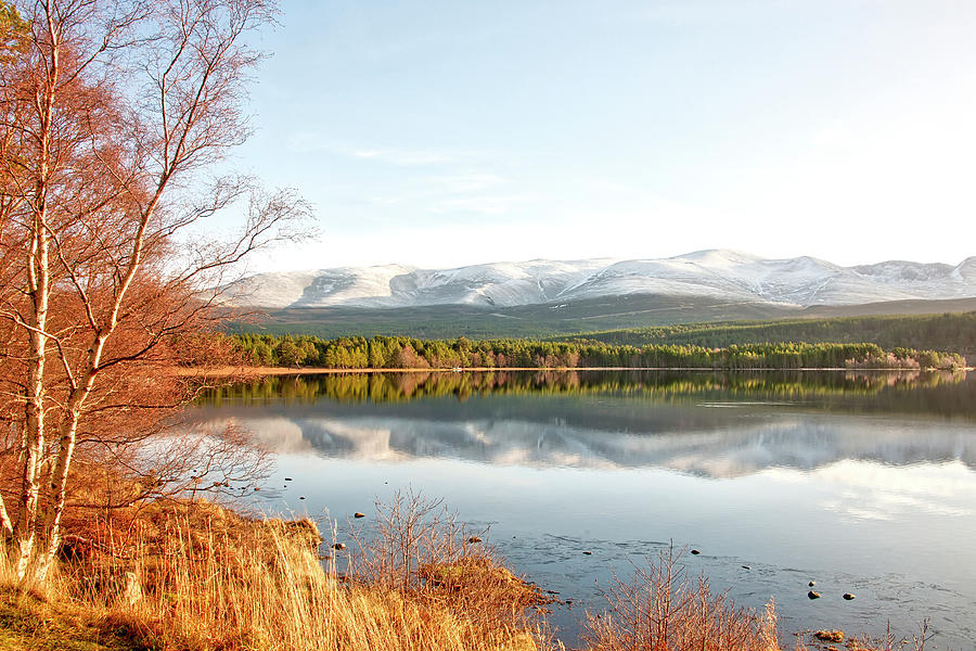 Aviemore by Gouzel -