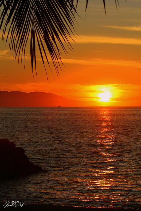 Puerto Vallarta Photograph - Post Script by Jason Blalock