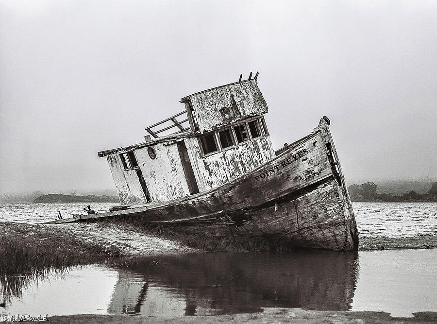 Pt Reyes Photograph - Pt Reyes by Mike Ronnebeck