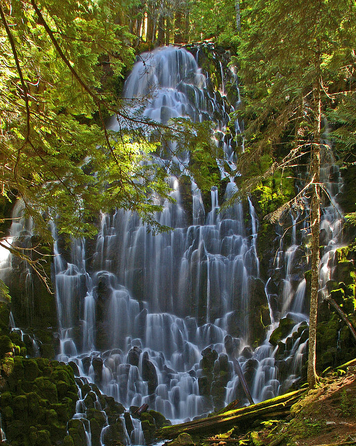 Oregon Photograph - Ramona Falls Oregon by Ulrich Burkhalter