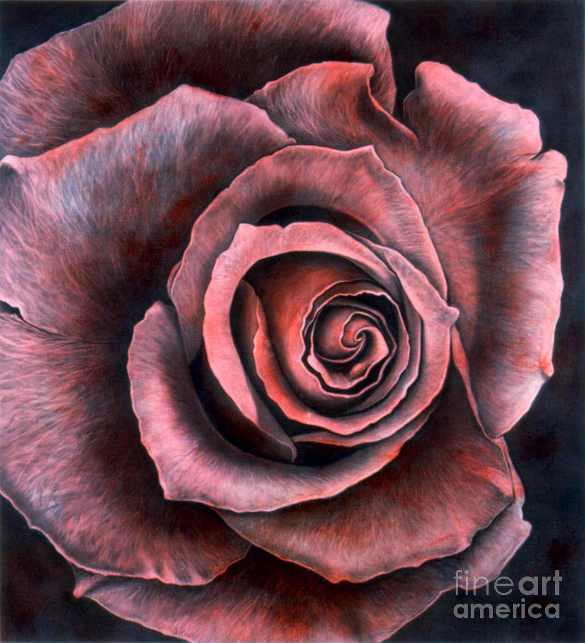 Realism Painting - Red Rose by Lawrence Supino