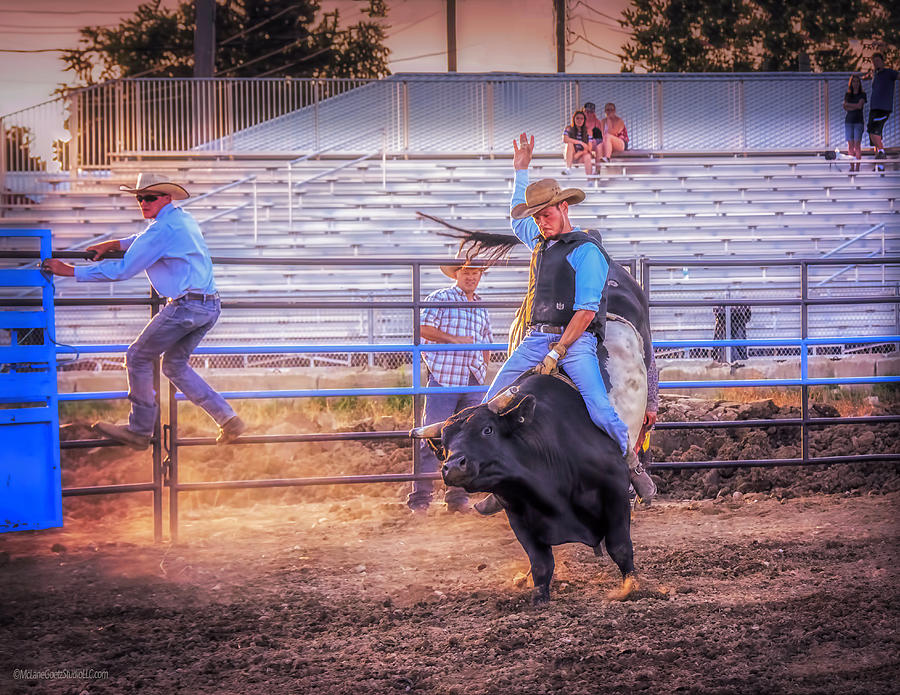 Sport Photograph - Rodeo Rider by LeeAnn McLaneGoetz McLaneGoetzStudioLLCcom