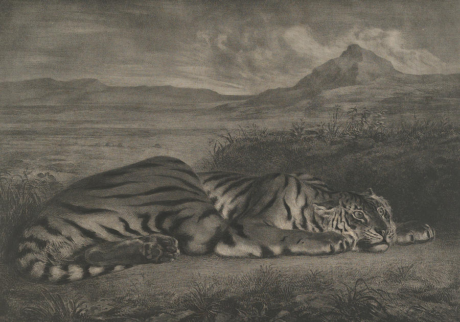 French Painter Relief - Royal Tiger by Eugene Delacroix