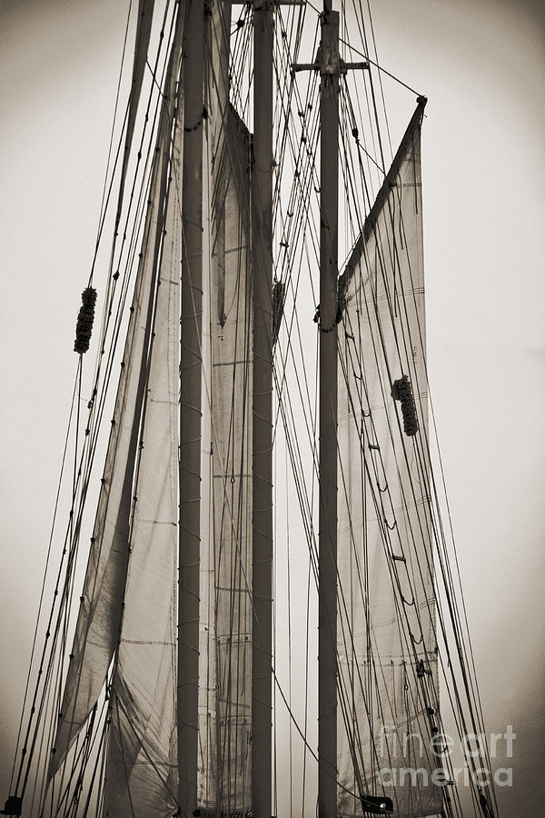 Tall Ship Photograph - Schooner Pride Tall Ship Charleston Sc by Dustin K Ryan