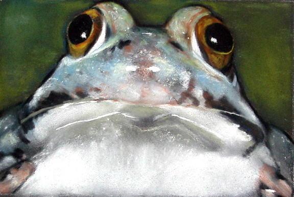 Sir Frog Pastel by Joyce Geleynse