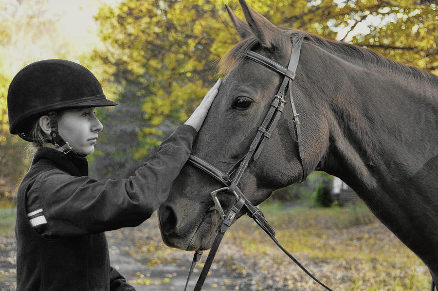 Horse Photograph - Soulmates Forever by JAMART Photography