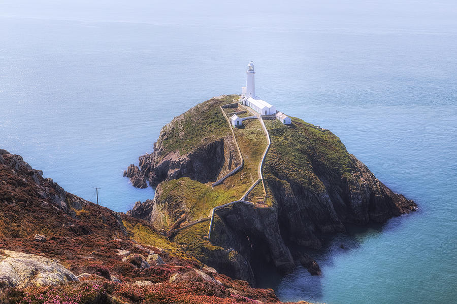 South Stack Photograph - South Stack - Wales by Joana Kruse
