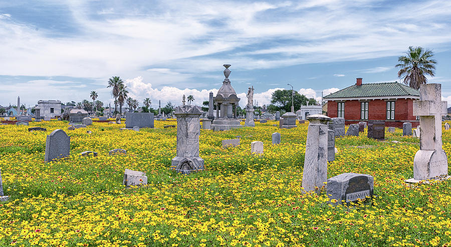 Springtime at the Cemetery by Victor Culpepper