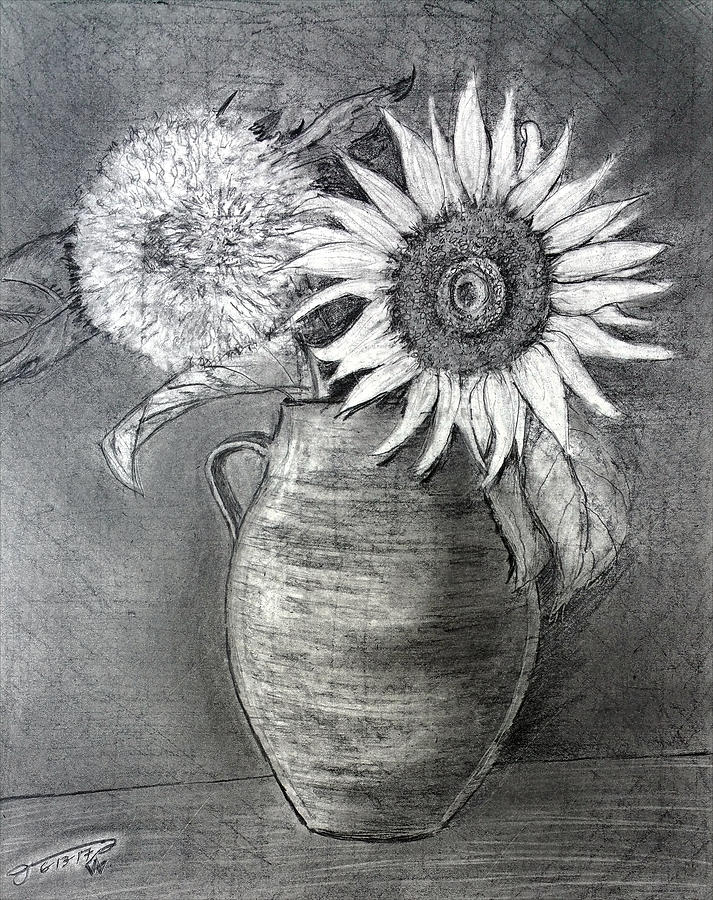 Still Life - Clay Vase With Two Sunflowers Drawing