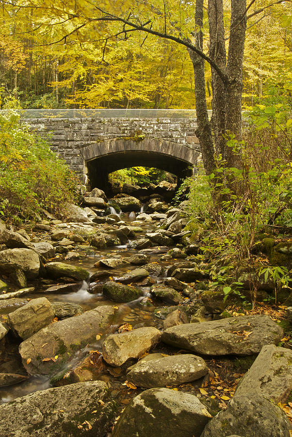 Tennessee Photograph - Stone Bridge 6063 by Michael Peychich