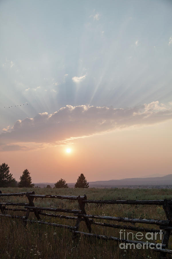 Fence Photograph - Sunset by Kati Finell