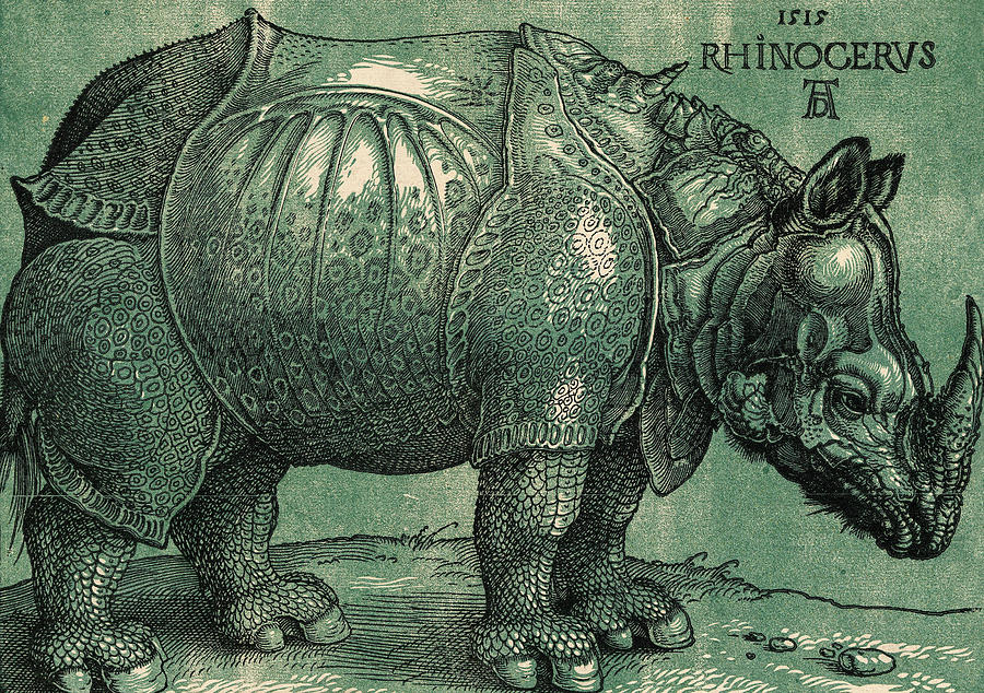 The Rhinoceros Painting - The Rhinoceros by Albrecht Durer