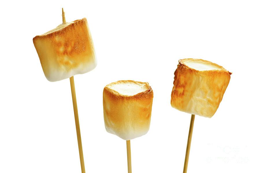 Marshmallows Photograph - Toasted Marshmallows by Elena Elisseeva