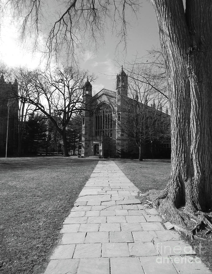 University Of Michigan Digital Art - University of Michigan Law Quad by Phil Perkins