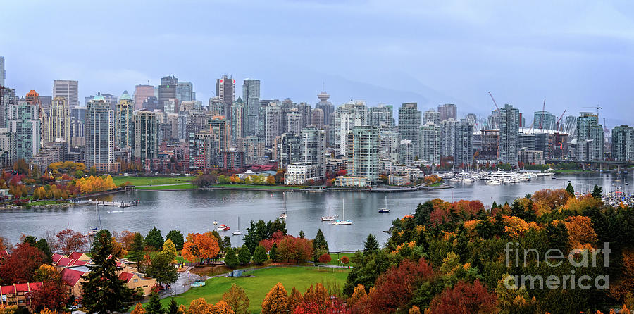 Autumn Photograph - Vancouver In Fall by Viktor Birkus