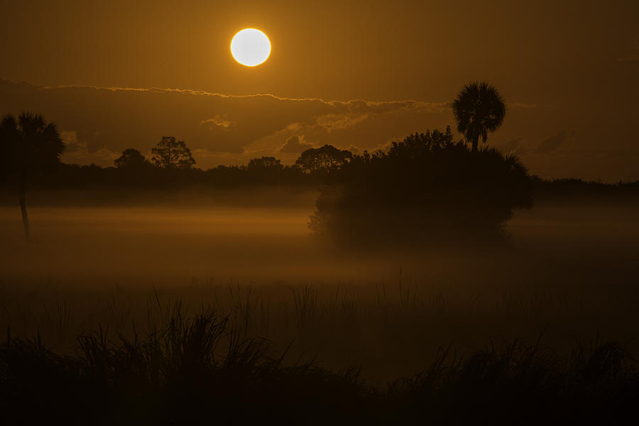 Viera Sunrise by Kenneth Blye