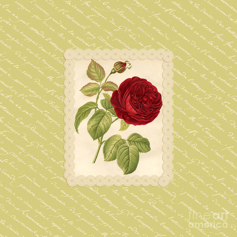 Vintage Red Rose With French Script Digital Art by Anne Kitzman