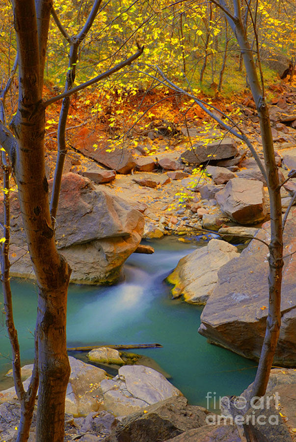 Utah Photograph - Virgin River In Autumn by Dennis Hammer
