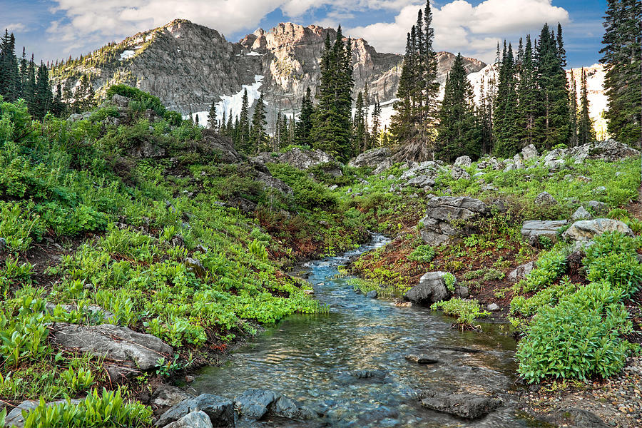 Wasatch Photograph - Wasatch Mountains Utah by Utah Images