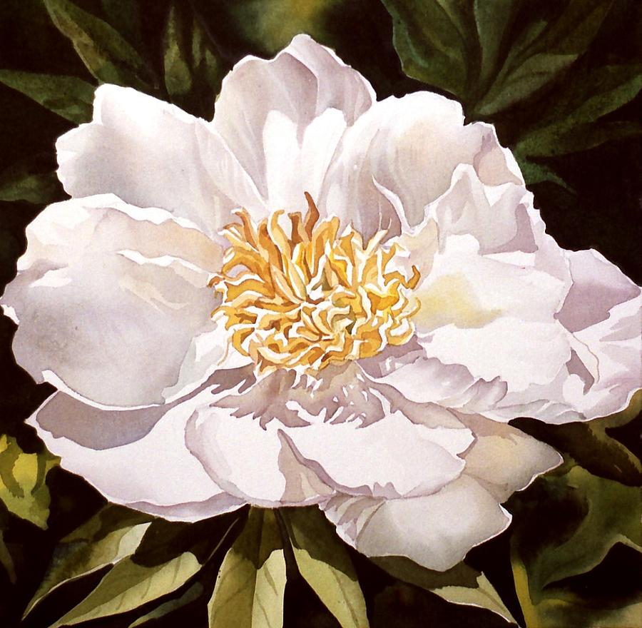 White peony painting by alfred ng flower painting white peony by alfred ng mightylinksfo