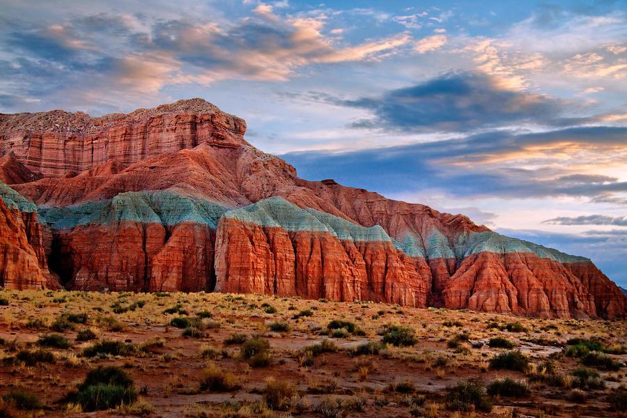 Desert Photograph - Wild Horse Mesa by Utah Images