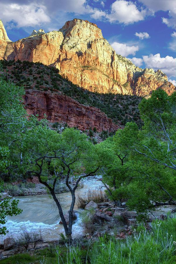 Zion National Park Photograph - Zion National Park by Utah Images
