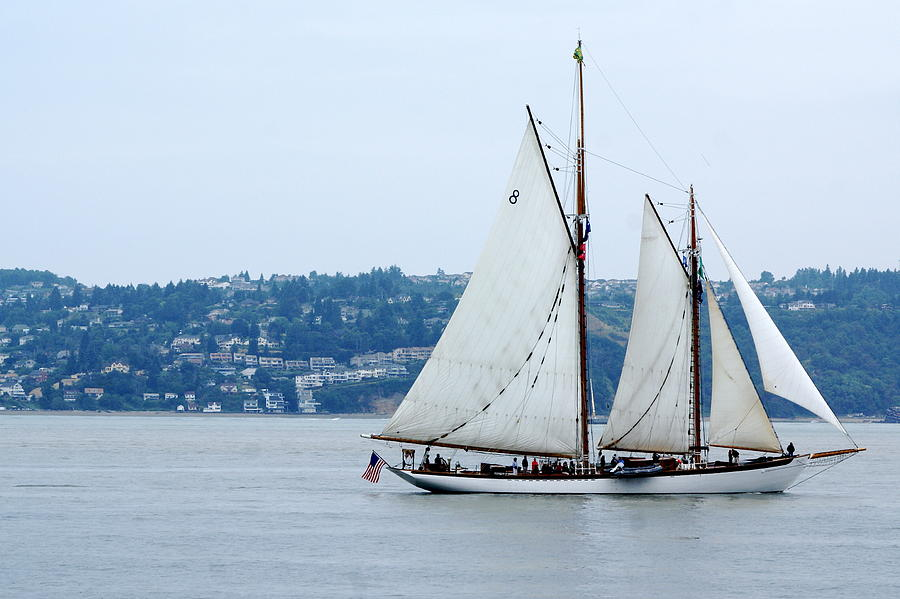 Tall Ships Photograph - Zodiac by Sonja Anderson