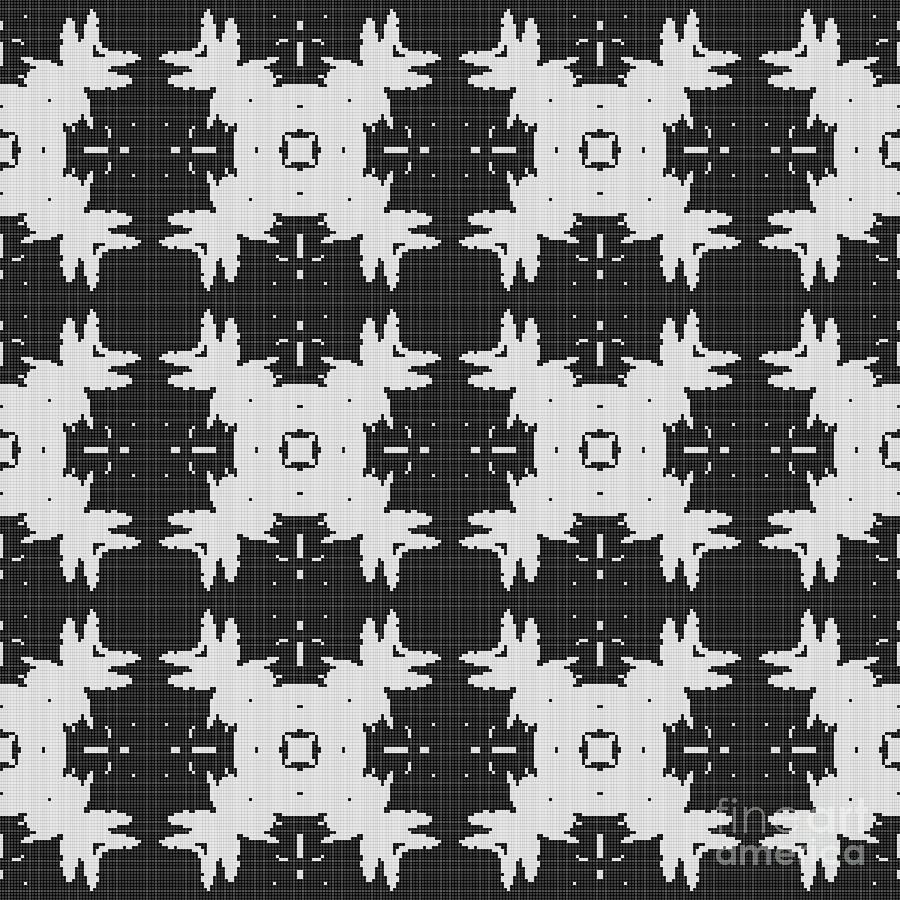 Curtain Lace Digital Art
