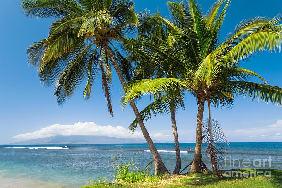 Tropical Beach Photograph - Tropical Beach by Mariusz Blach