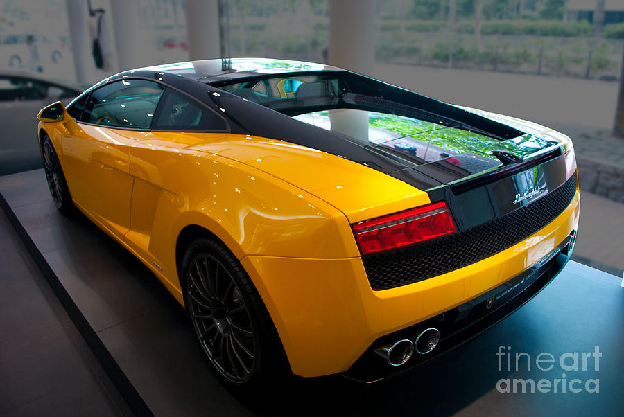Sports Photograph   2011 Lamborghini Gallardo Lp560 4 Bicolore   Rear View  By Stuart Row