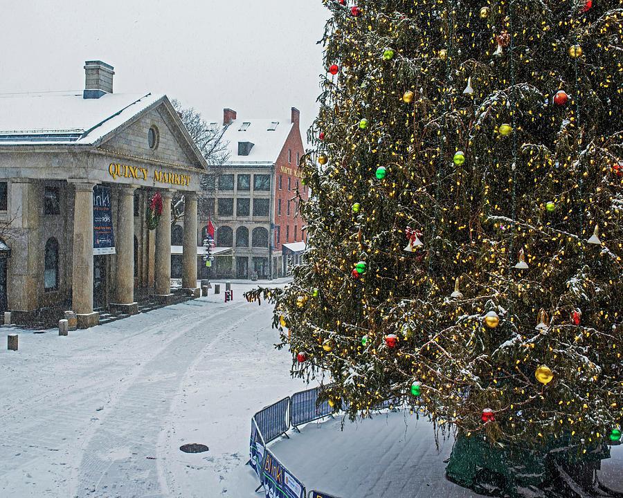 Christmas In Boston Massachusetts.2016 Fanueil Hall Christmas Tree Boston Covered In Snow Boston Ma