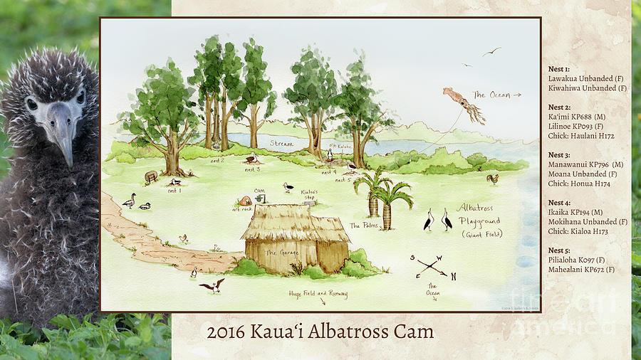 Albatross Digital Art - 2016 Kauai Albatross Cam Map by Elizabeth Smith