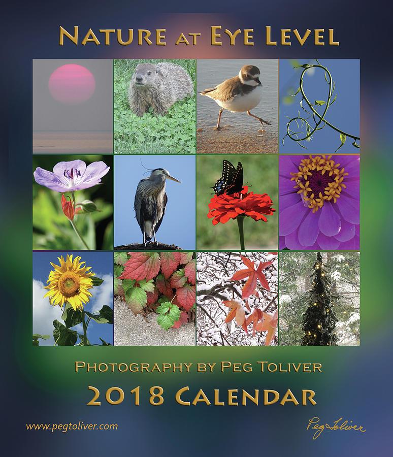 2018 Calendar Thumbprints by Peg Toliver