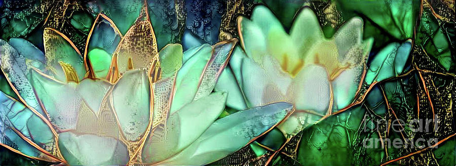 Aquatic Plant Digital Art - Jeweled Water Lilies by Amy Cicconi