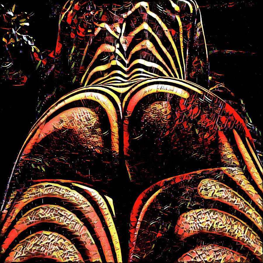 2574s-RES Zebra Striped Booty Rendered as Abstract Oil Painting by Chris Maher