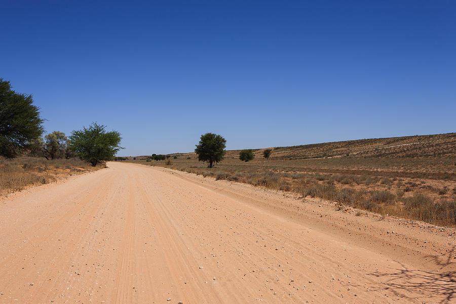 Kalahari Desert Photograph - Kgalagadi by Davide Guidolin