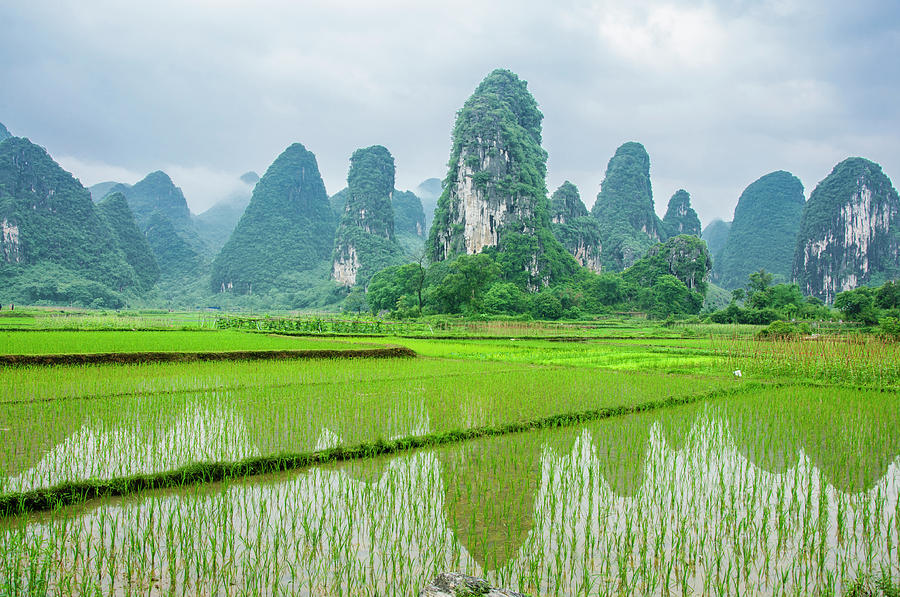 Landscape Photograph - The Beautiful Karst Rural Scenery In Spring by Carl Ning
