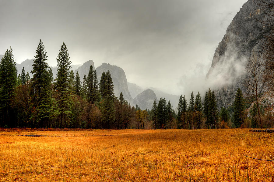 Yosemite Photograph - Yosemite Valley by Paul Moore