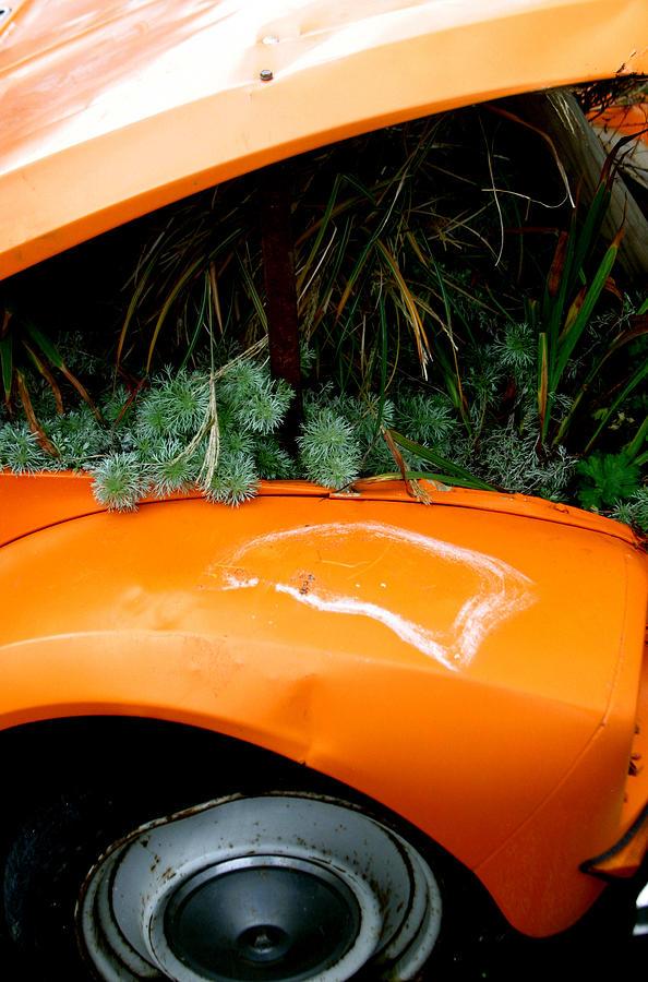 Photographer Photograph - 2cv Plant Pot by Jez C Self
